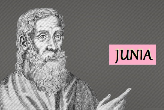 Origen on the Apostle Junia